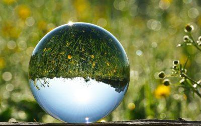 Crecer en Pareja: El efecto espejo